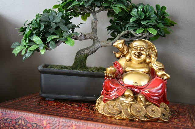 """Feng Shui at Office! Is the """"chi"""" flowing right at your workplace?"""