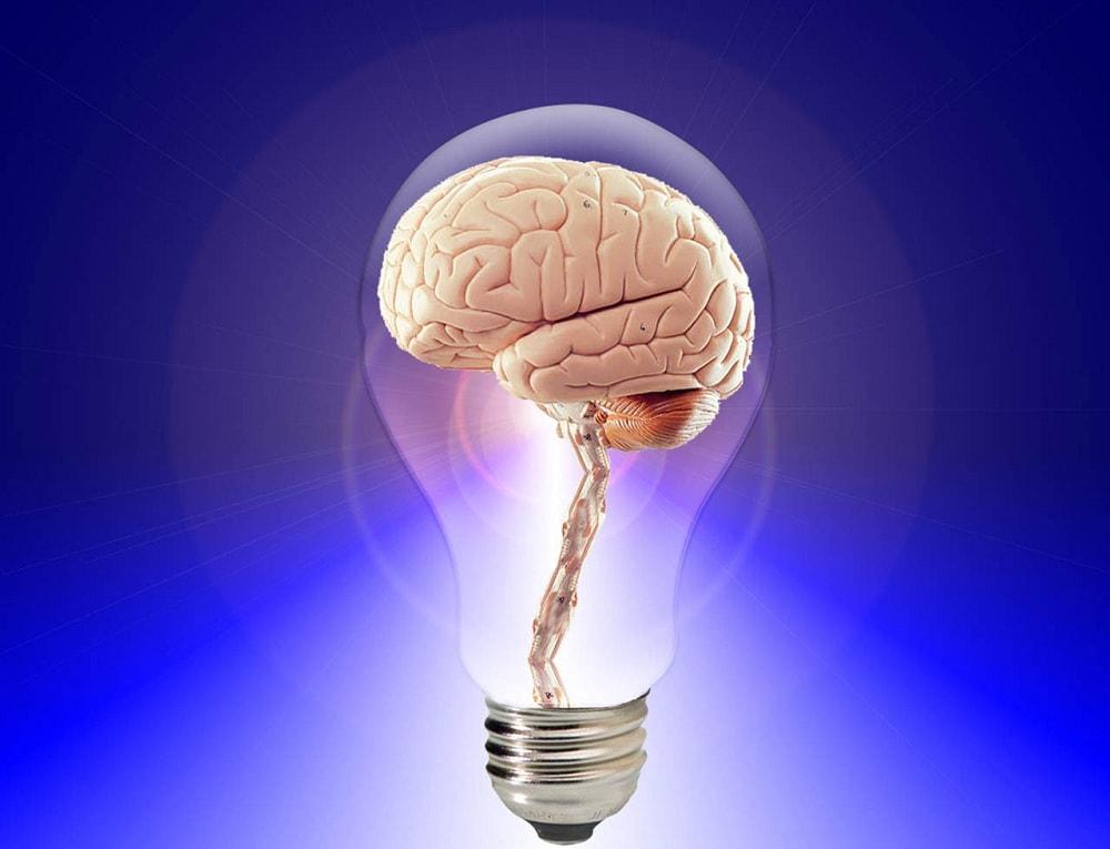 brain focus